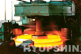 Jinan Hyupshin Flanges Co., Ltd, forging flange, forged flange