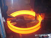 Jinan Hyupshin Flanges Co., Ltd, flanges foring and rolling